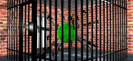 La Cage Aux Folle